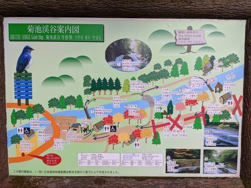 大觀峰.菊池溪谷|¥780吃到飽山菜餐廳. 5