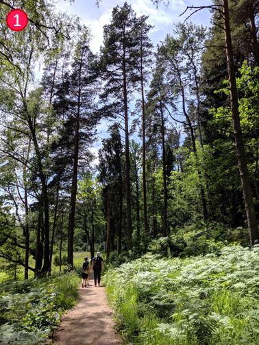 錫古爾達Siguldas 上帝的花園.圖雷達城堡.拉脫維亞自由行 16